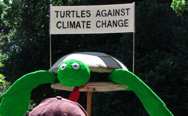 turtles_against_climate_change